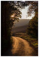 Der Weg führt wieder ins Licht