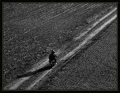 Der Weg II