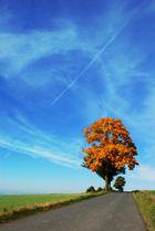 Der Weg in den Herbst...