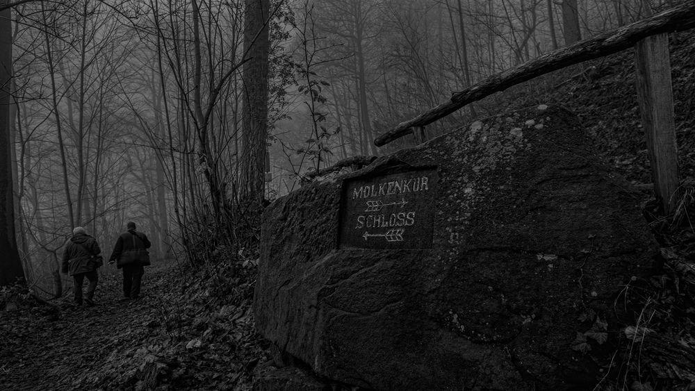 der Weg in den Nebel