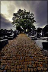 Der Weg in die Ewigkeit