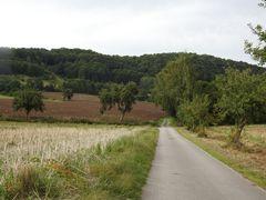 Der Weg in die Natur