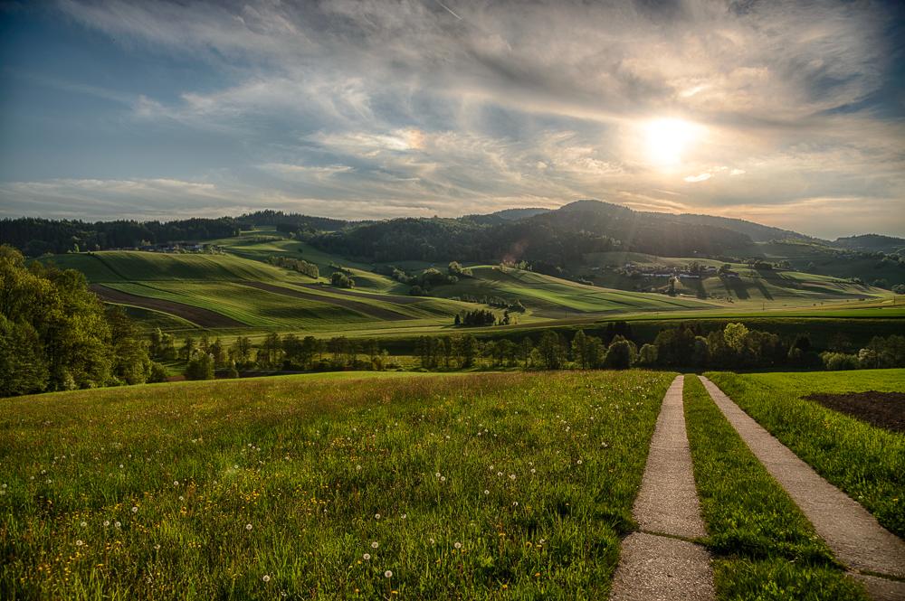 Der Weg ins Grüne - Mühlviertel