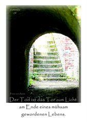 Der Weg ins Licht ...