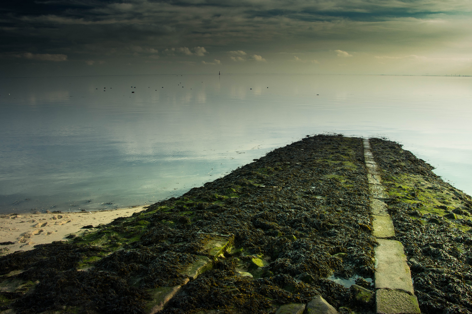 Der Weg ins Wasser