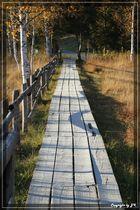 Der Weg ist das Ziel......