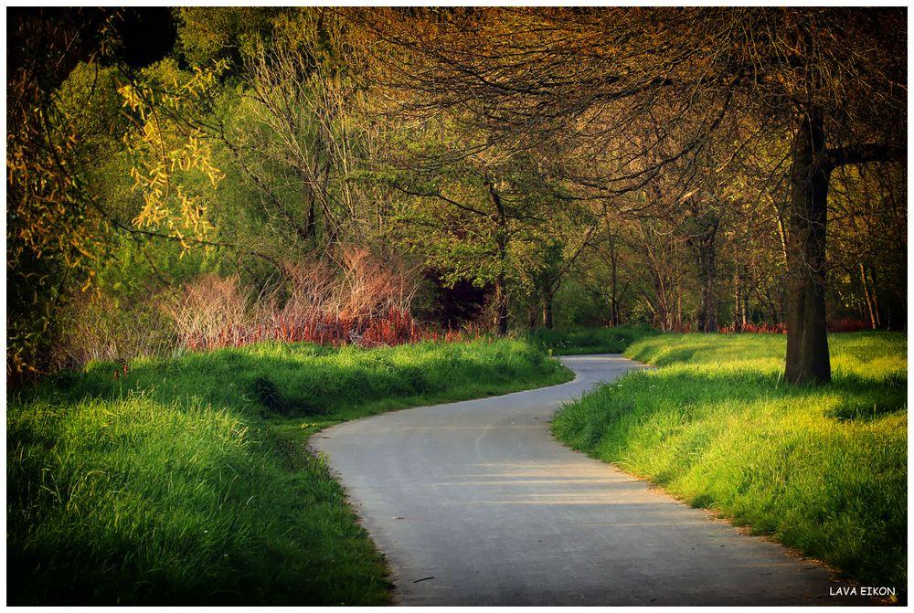 Der Weg ist voller Wärme und Güte, ...