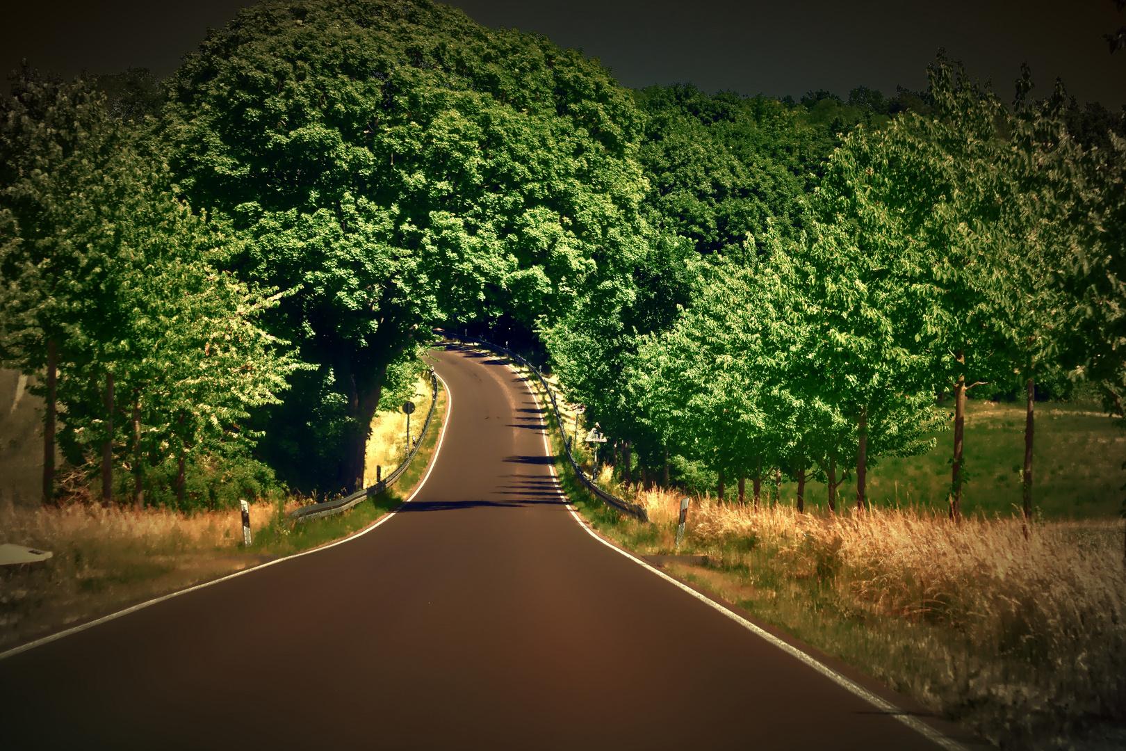 Der Weg nach Hause