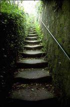 Der Weg nach oben (2)