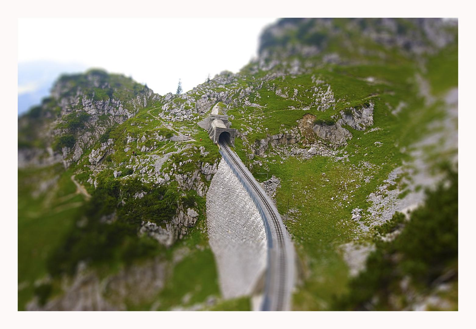 - Der Weg nach oben -