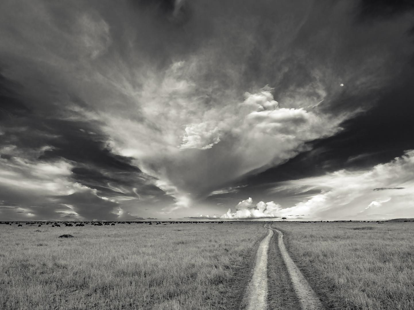 Der Weg zum Horizont