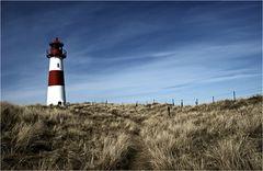 Der Weg zum Leuchtturm