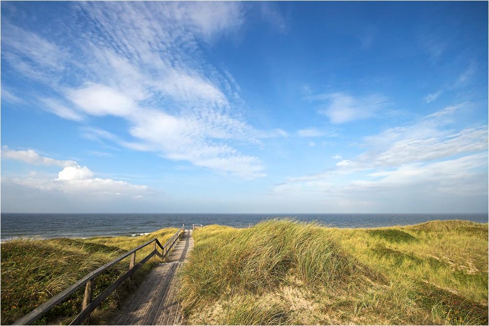 Der Weg zum Meer