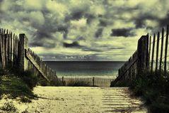 Der Weg zum Meer!