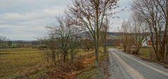 der Weg zum See (el camino al lago)