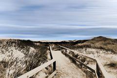 Der Weg zum Strand # P1070099 Kopie 4