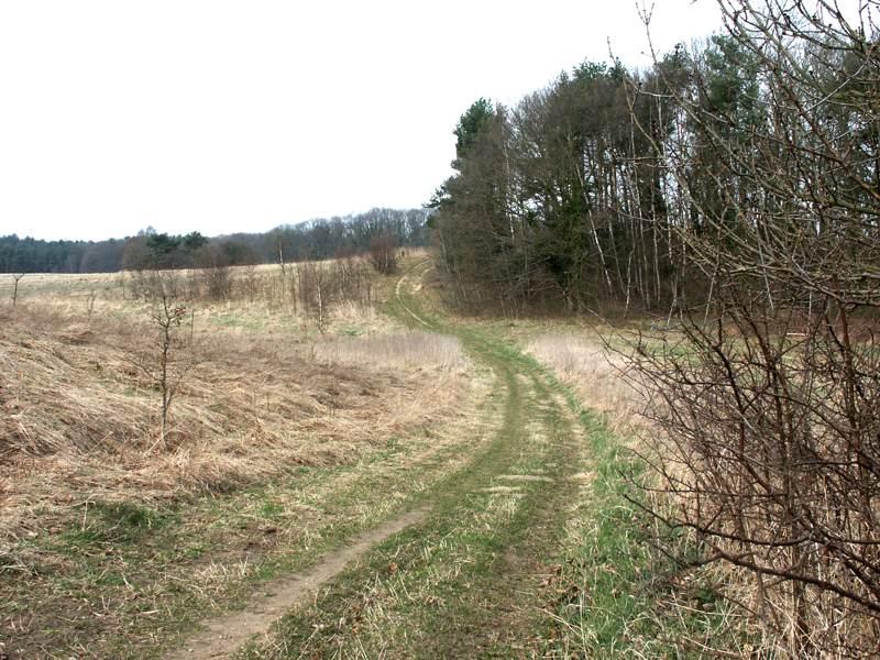 Der Weg zum Ziel oder ist der Weg das Ziel?