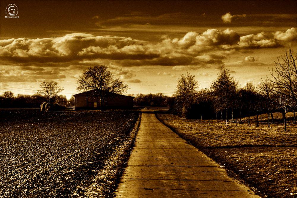 Der Weg zur Scheune