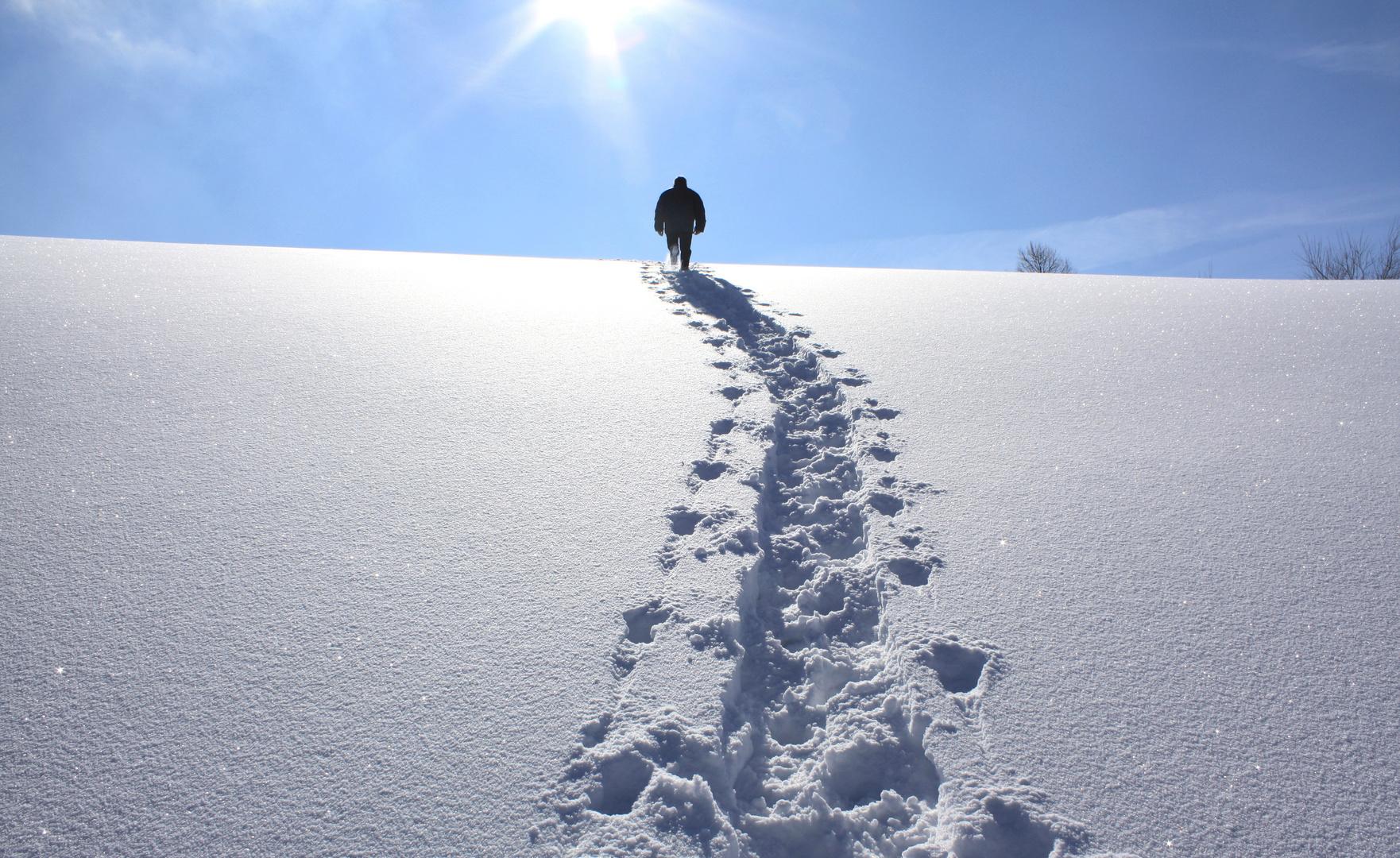 der Weg zur Sonne...