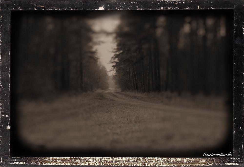 Der weg zurück in die vergangenheit?