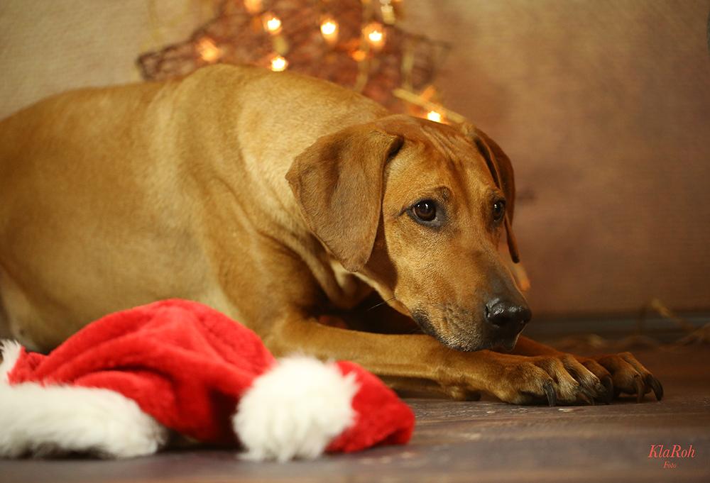 der Weihnachtsmann...