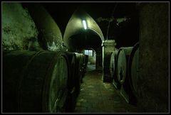 Der Weinkeller der Villa Torrigiani (Lucca / Toscana)