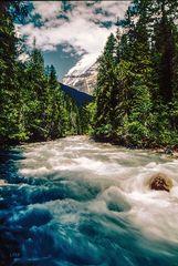 Der weite Weg zum Mount Robson