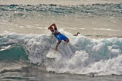 >Der Wellenreiter 2