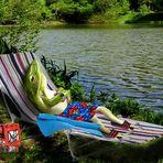Der Wetterfrosch macht Urlaub .......