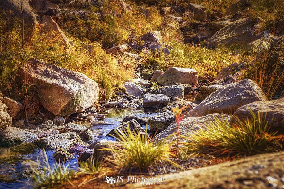 Der Wildbach am Brocken