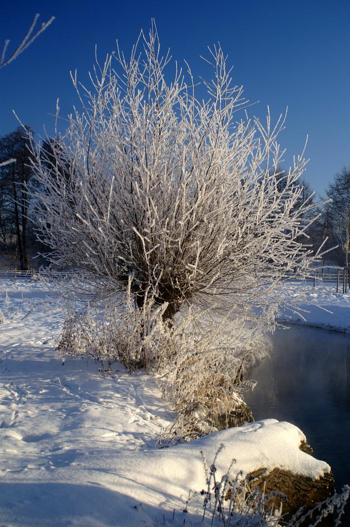 ... Der Winter ...