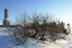 Der Winter geht @16 mm