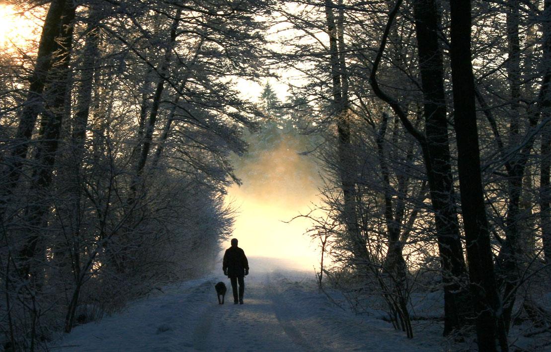 Der Winter geht