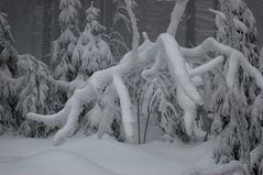 """Der Winter """"greift"""" um sich"""