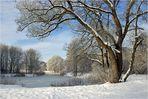 Der Winter hat Einzug gehalten