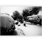 Der Winter hat uns voll im Griff (3)