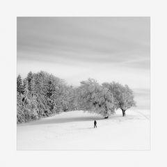 Der Winter ist da! (2)