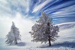 Der Winter ist im Anmarsch