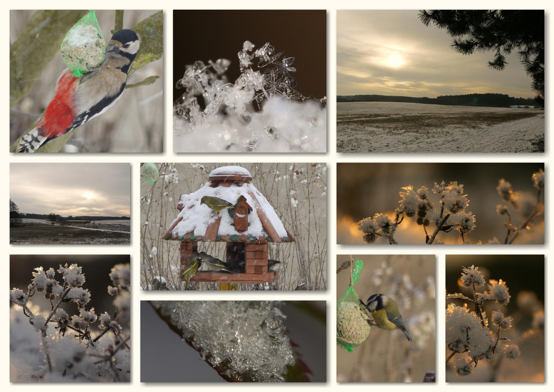 ...der Winter ist zurück...