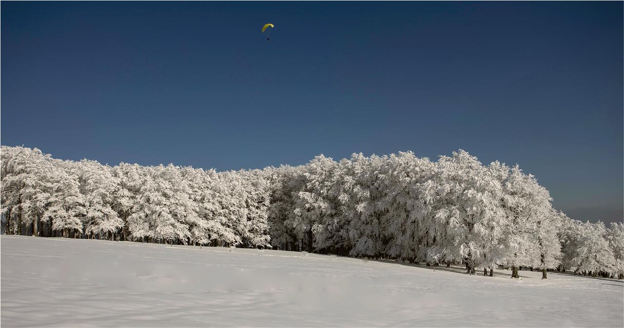 Der Winter kämpft...