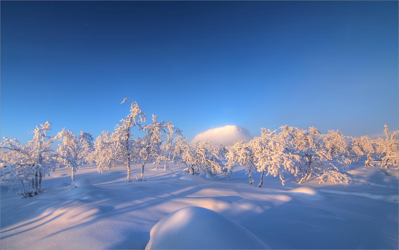 Der Winter kann so hell sein....