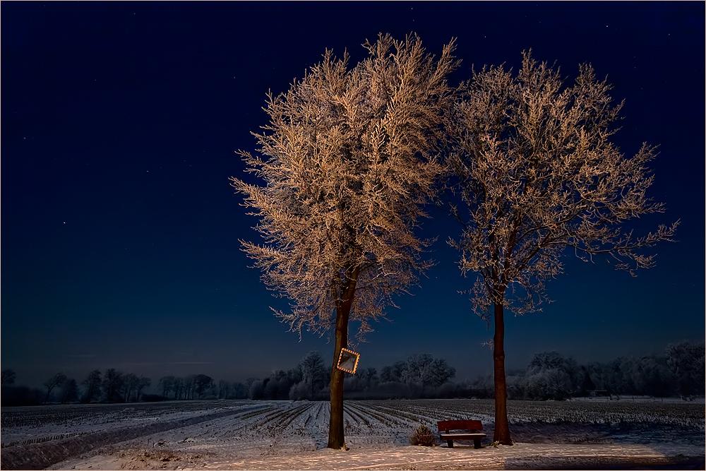 Der Winter kommt... #4