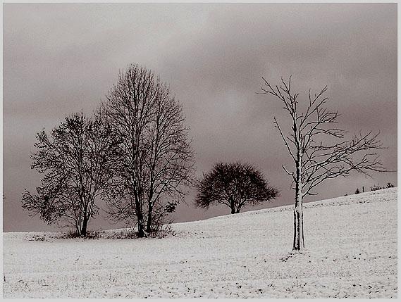 der Winter kommt