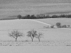 der Winter kommt....