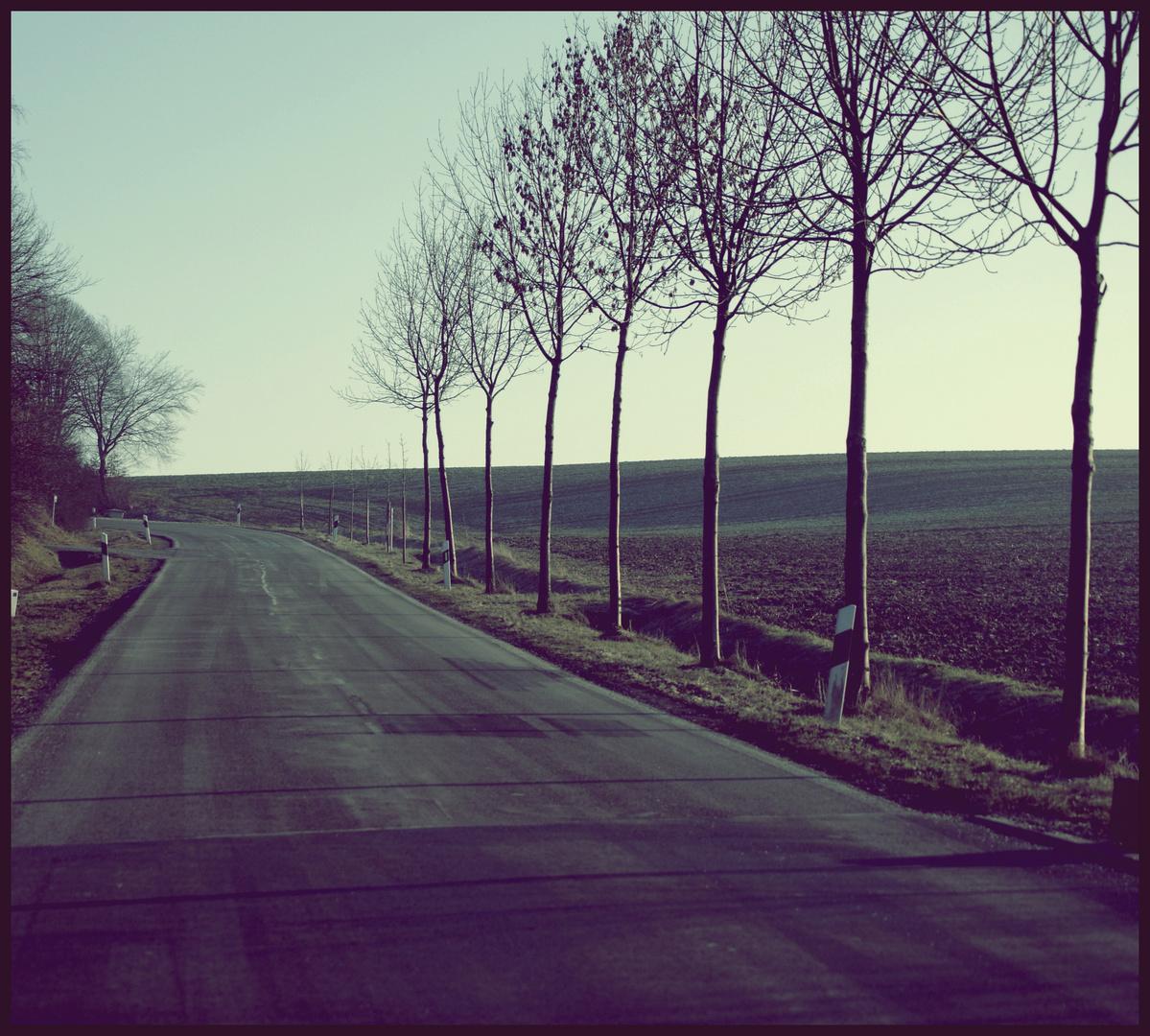 Der Winter kommt ♥ (: