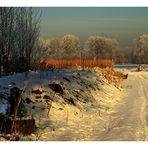 """"""" Der Winter kommt und geht wieder """"......"""
