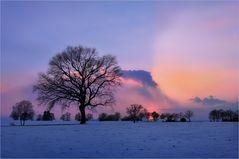 Der Winter schlägt Kapriolen