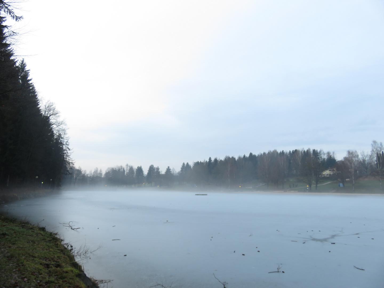 Der winterliche See bei Eging im Bayerischen Wald