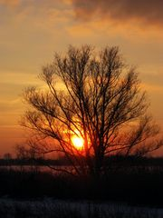 Der winterliche Sonnenuntergang I