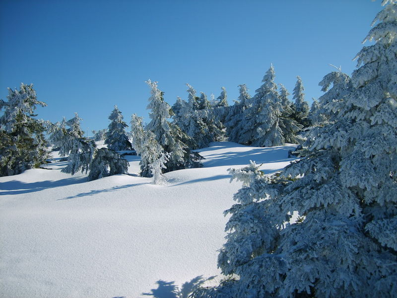 """Der wohl letzte """"traumhafte"""" Wintertag auf dem Brocken"""